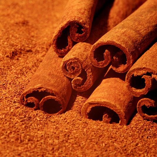 closeup of cinnamon sticks on top of ground cinnamon